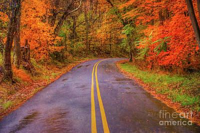 Digital Art - Rural Road Fall Leaves by Randy Steele
