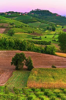 Photograph - Rural Scene by Scacciamosche