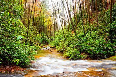Photograph - Rushing Downstream In Autumn by Debra and Dave Vanderlaan