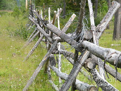 Photograph - Russel Fence by Ann E Robson