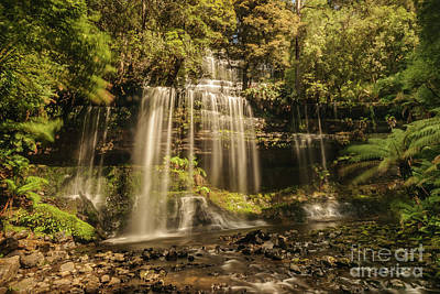 Photograph - Russell Falls 01 by Werner Padarin