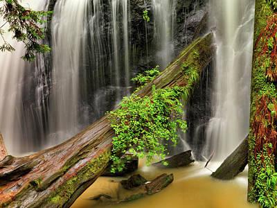 Photograph - Russian Gulch Falls by Leland D Howard