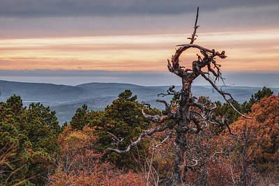 Katharine Hepburn - Rustic Oklahoma Ouachita Mountain Landscape by Gregory Ballos