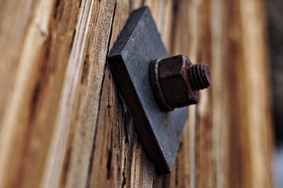 Photograph - Rusty Bolt by Will Campbell