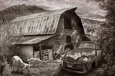 Photograph - Rusty Chevy At The Farm In Sepia Tones by Debra and Dave Vanderlaan