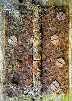 Photograph - Rusty Old Door Hinge With Cobwebs by Richard Brookes