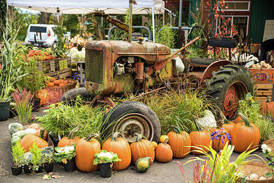 Photograph - Rusty Old Tractor With Pumpkins by Tom Cochran