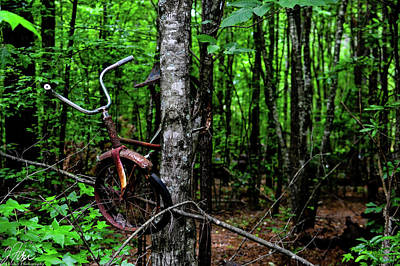 Wall Art - Photograph - rusty, rusted, weeds, forgotten, bicycle, rusted bicycle in the Tree by James Fisher