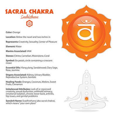 Digital Art - Sacral - Svadhishthana Art And Info by Serena King