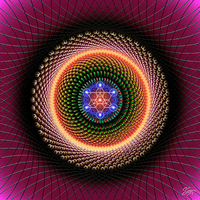 Digital Art - Sacred Geometry 737 by Endre Balogh