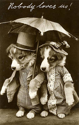 Photograph - Sad Puppies Holding Umbrella by Graphicaartis