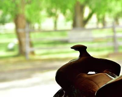 Jerry Sodorff Royalty-Free and Rights-Managed Images - Saddle Horn by Jerry Sodorff