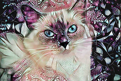 Digital Art - Sadie The Ragdoll Cat by Peggy Collins