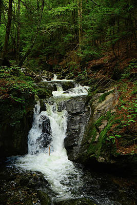 Photograph - Sages Ravine 3 by Raymond Salani III