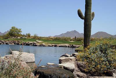 Photograph - Saguaro Cactus At Golf Course by Markanja