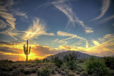 Photograph - Saguaro Sol by Jason Corneveaux