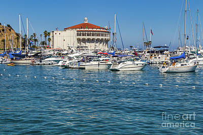 Wall Art - Photograph - Sailboats In Avalon Bay by Roslyn Wilkins