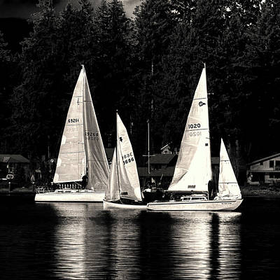 Photograph - Sails Up by David Patterson