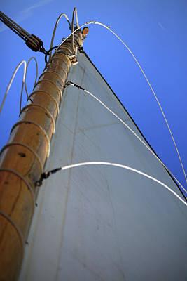 Photograph - Sails Up by Karol Livote