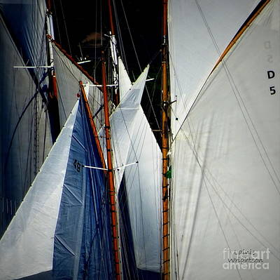 Photograph - Sails Vie For Wind by Lainie Wrightson