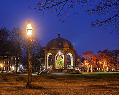 Photograph - Salem Commons Christmas Tree 2017 Salem Ma Light by Toby McGuire