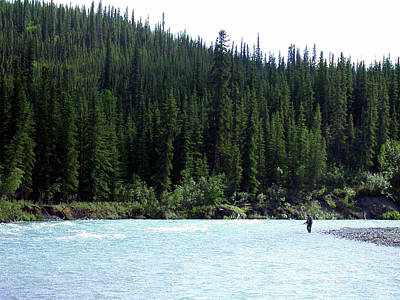 Photograph - Salmon Fishing In Alaska by Mark Duehmig
