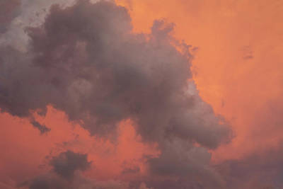 Photograph - Salmon Sky by Kathleen Gauthier