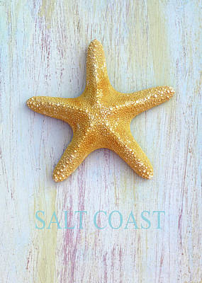 Photograph - Salt Coast by Kathi Mirto