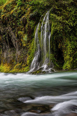 Photograph - Salt Creek Falls At Salmon Creek by Matthew Irvin