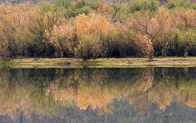 Photograph - Salt River Reflections 0308-010619-1 by Tam Ryan