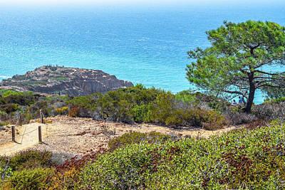 Photograph - San Diego Coast by Debbie Ann Powell