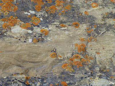 Photograph - Sand, Charcoal, And Rust by Cris Fulton
