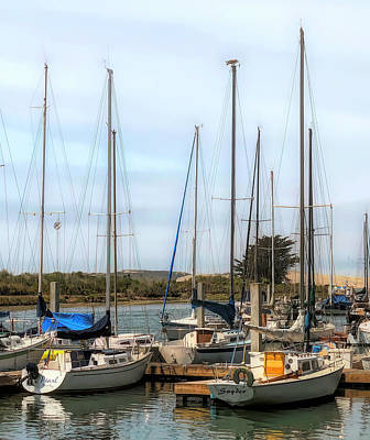 Photograph - Sand Dune And Sail Boats by Barbra Snyder