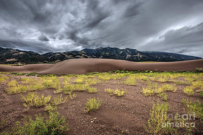Photograph - Sand Dunes by Joe Sparks