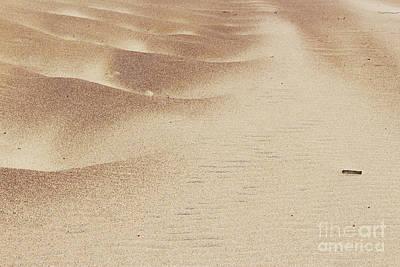 Easter Bunny - Sand Dunes by Katherine Erickson