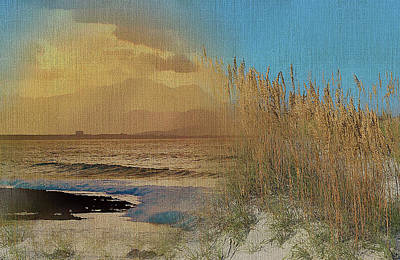 Mixed Media - Sand Grasses On The Coastal Dunes by Clive Littin