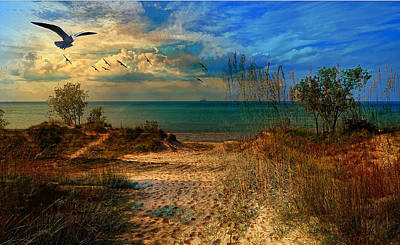 Mixed Media - Sand Track To The Ocean At Dusk by Clive Littin