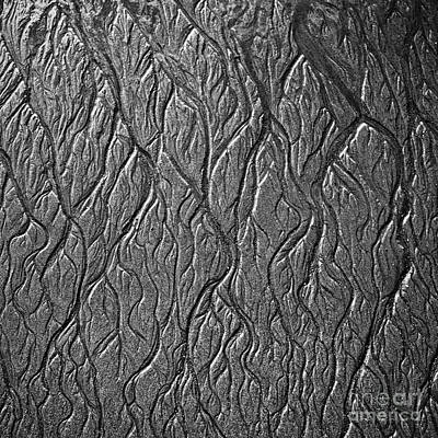 Photograph - Sand Veins 1 by Patrick M Lynch