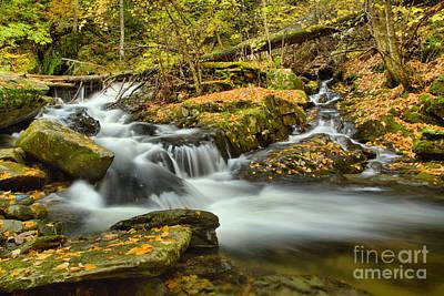 Photograph - Sanderson Brook Falls Stream by Adam Jewell