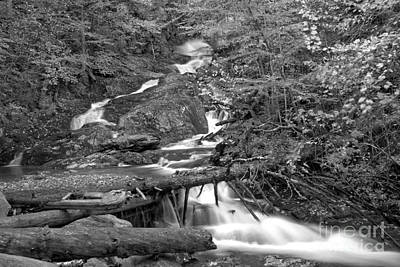 Photograph - Sanderson Brook Falls Through The Logs Black And White by Adam Jewell