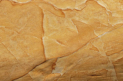 Photograph - Sandstone Backdrop by Michael Chatt