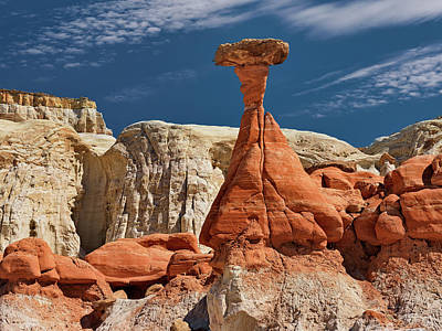 Photograph - Sandstone Erosion by Leland D Howard