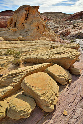 Photograph - Sandstone Shapes Of Valley Of Firee by Ray Mathis