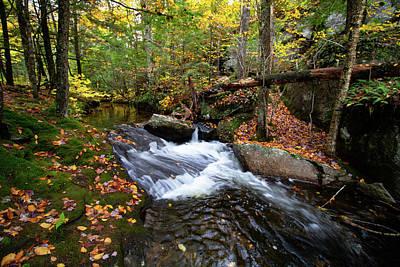 Photograph - Sandwich Notch Waterfall Nh by Jeff Folger