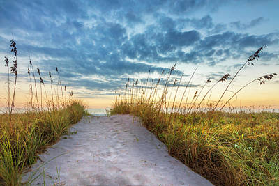 Photograph - Sandy Path Over The Dunes by Debra and Dave Vanderlaan