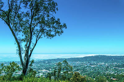 Photograph - Santa Barbara Lookout by Brett Nelson