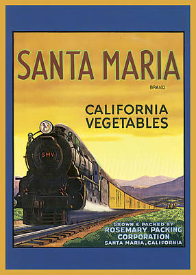 Photograph - Santa Maria California Vegetables by Studio Artist