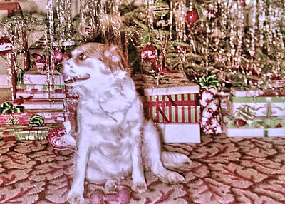 Photograph - Santa Paws by JAMART Photography
