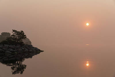 Photograph - Satiny Pinks And Rough Grays - Soft Fog Sunrise On The Lake by Georgia Mizuleva