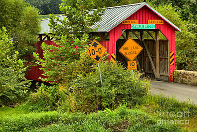 Photograph - Saville Covered Bridge In The Woods by Adam Jewell